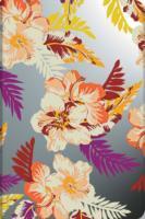 Cover-Bild zu Aloha - Lokahi Mini liniert