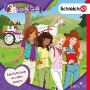 Cover-Bild zu Folge 13: Das Geheimnis der alten Kutsche (Audio Download) von Landa, Leonie (Gelesen)