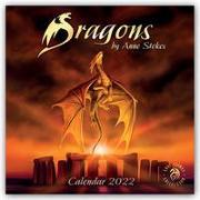 Cover-Bild zu Dragons by Anne Stokes - Drachen von Anne Stokes 2022