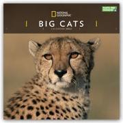 Cover-Bild zu Big Cats - Raubkatzen - Löwen - Tiger - Geparden - Leoparden 2022