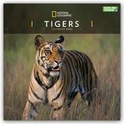 Cover-Bild zu National Geographic Tigers - Tiger 2022