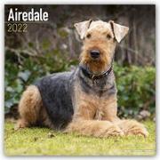 Cover-Bild zu Airedale Terriers 2022 - 18-Monatskalender mit freier DogDays-App