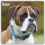 Cover-Bild zu Boxers International - Boxer 2022 - 18-Monatskalender mit freier DogDays-App
