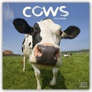 Cover-Bild zu Cows - Kühe 2022 - 18-Monatskalender