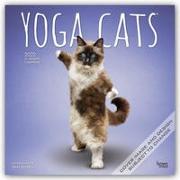 Cover-Bild zu Yoga Cats - Joga-Katzen 2022 - 18-Monatskalender