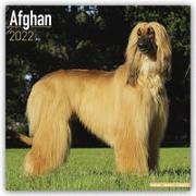 Cover-Bild zu Afghan - Afghanen 2022