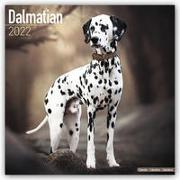 Cover-Bild zu Dalmatians - Dalmatiner 2022 - 18-Monatskalender mit freier DogDays-App