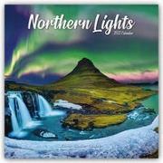 Cover-Bild zu Northern Lights - Faszinierendes Nordlicht - Aurora Borealis 2022