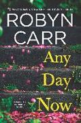 Cover-Bild zu Any Day Now (Sullivan's Crossing, Book 2) (eBook) von Carr, Robyn
