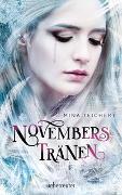 Cover-Bild zu Novembers Tränen von Teichert, Mina