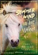 Cover-Bild zu Sommerwind in der Mähne von Teichert, Mina