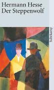 Cover-Bild zu Der Steppenwolf von Hesse, Hermann