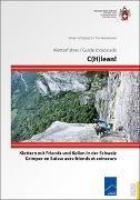 Cover-Bild zu C(H)lean von Schüpbach, Silvan