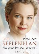 Cover-Bild zu Der Seelenplan (eBook) von Haas, Jana