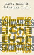 Cover-Bild zu Schwarzes Licht von Mulisch, Harry