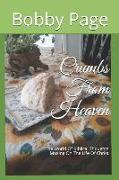 Cover-Bild zu Crumbs from Heaven: The World of Biblical Thoughts Musing on the Life of Christ von Page, Kathy