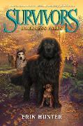 Cover-Bild zu Survivors #3: Darkness Falls von Hunter, Erin