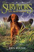 Cover-Bild zu Survivors #4: The Broken Path von Hunter, Erin
