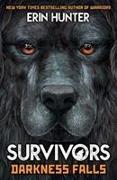 Cover-Bild zu Survivors Book 3: Darkness Falls von Hunter, Erin