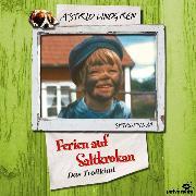 Cover-Bild zu Ferien auf Saltkrokan - Das Trollkind (Audio Download) von Lindgren, Astrid