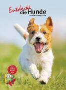 Cover-Bild zu Entdecke die Hunde von Krauß, Katja