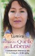 Cover-Bild zu Du bist die Quelle des Lebens von Lumira