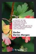 Cover-Bild zu Morgan, Hector Davies: A Survey of the Platform of the Christian Church Exhibited in the Scriptures, Applied to Its Actual Circumstances and Condition