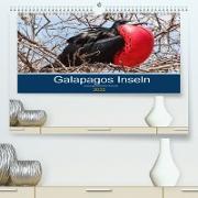 Cover-Bild zu Photography, Iam: Tierwelt auf Galapagos (Premium, hochwertiger DIN A2 Wandkalender 2022, Kunstdruck in Hochglanz)