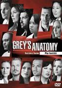 Cover-Bild zu Rhimes, Shonda (Reg.): Grey's Anatomy - 7 Serie
