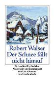 Cover-Bild zu Walser, Robert: Der Schnee fällt nicht hinauf