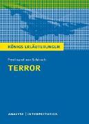 Cover-Bild zu Möbius, Thomas: Terror. Königs Erläuterungen (eBook)