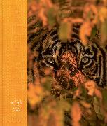 Cover-Bild zu Parker, Steve: Camouflage