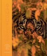 Cover-Bild zu Parker, Steve: Camouflage (eBook)