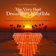 Cover-Bild zu Evans, Gomer Edwin (Komponist): The very best Dreams of Panflute