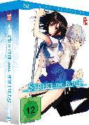 Cover-Bild zu Strike the Blood - Blu-ray 1 + Sammelschuber [Limited Edition]