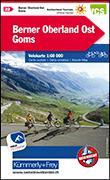 Cover-Bild zu Hallwag Kümmerly+Frey AG (Hrsg.): Berner Oberland Ost - Goms Velokarte Nr. 22. 1:60'000