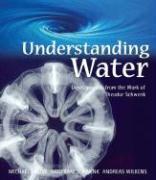 Cover-Bild zu Jacobi, Michael: Understanding Water: Developments from the Work of Theodor Schwenk