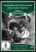 Cover-Bild zu Fitz, Hans: Brüderchen und Schwesterchen