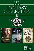 Cover-Bild zu Heitmann, Tanja: Fantasy Collection II (eBook)