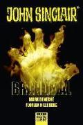Cover-Bild zu Brandmal von Benecke, Mark