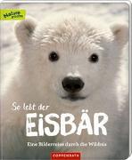 Cover-Bild zu So lebt der Eisbär von Noa, Sandra
