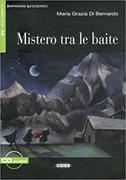 Cover-Bild zu Mistero tra le baite von Di Bernardo, Maria Grazia