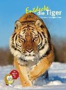 Cover-Bild zu Entdecke die Tiger von Wilms, Thomas