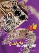 Cover-Bild zu Entdecke die Spinnen von Kunz, Kriton