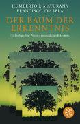 Cover-Bild zu Der Baum der Erkenntnis von Maturana, Humberto R.