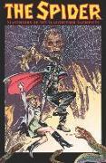 Cover-Bild zu Mcgregor, Don: The Spider: Scavengers