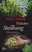 Cover-Bild zu Grote, Paul: Tödlicher Steilhang
