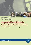 Cover-Bild zu Jugendhilfe und Schule (eBook) von Deinet, Ulrich (Hrsg.)