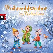 Cover-Bild zu Weihnachtszauber im Wichtelland (Audio Download) von Moser, Annette