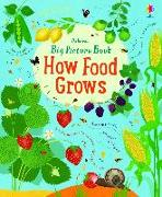 Cover-Bild zu Bone, Emily: It all starts with a seed... how food grows